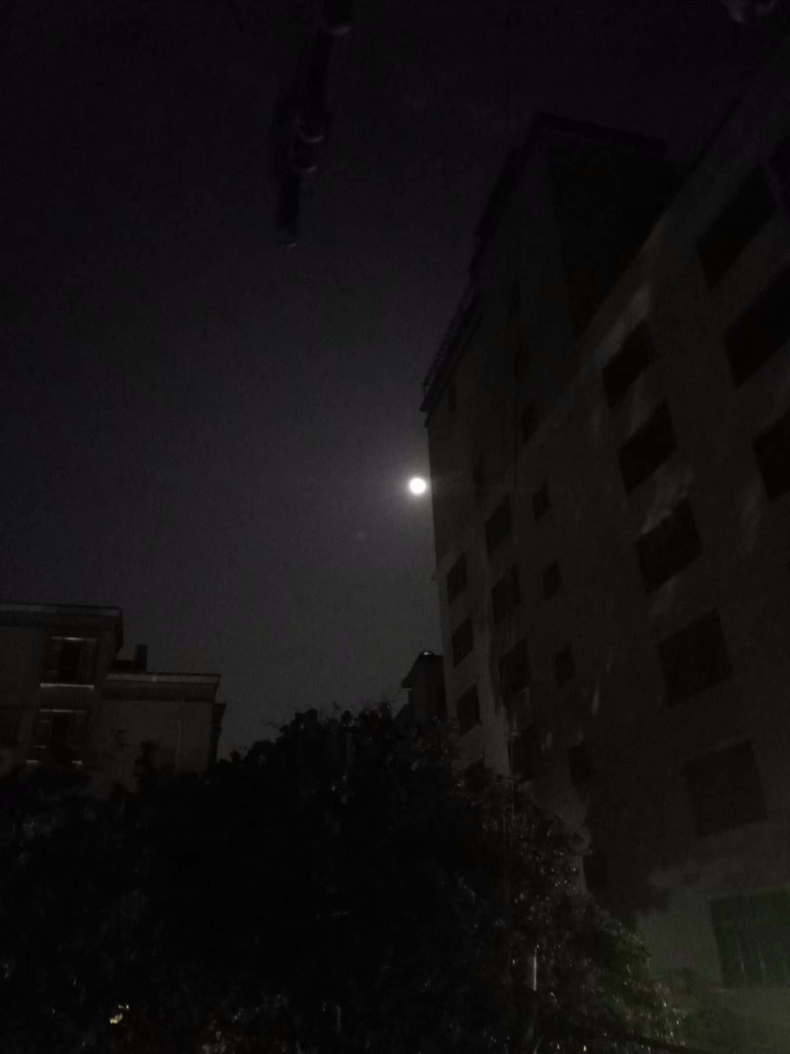 9.25 (1).jpg 十五的月亮十六圆 一句话