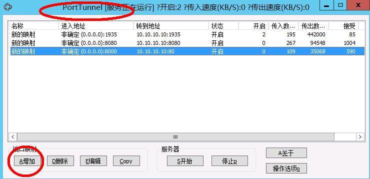 星际蜗牛C款服务器(第八篇)服务器搭建VPS+软件+映射外网篇(下篇) 互联网IT 第16张