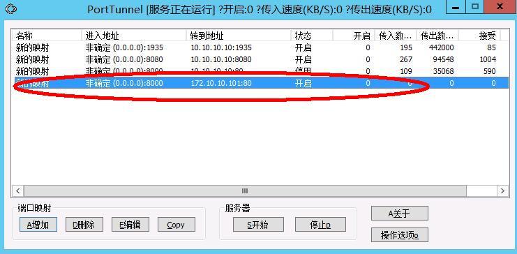 星际蜗牛C款服务器(第八篇)服务器搭建VPS+软件+映射外网篇(下篇) 互联网IT 第18张