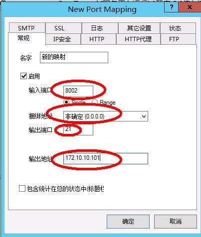 星际蜗牛C款服务器(第八篇)服务器搭建VPS+软件+映射外网篇(下篇) 互联网IT 第26张