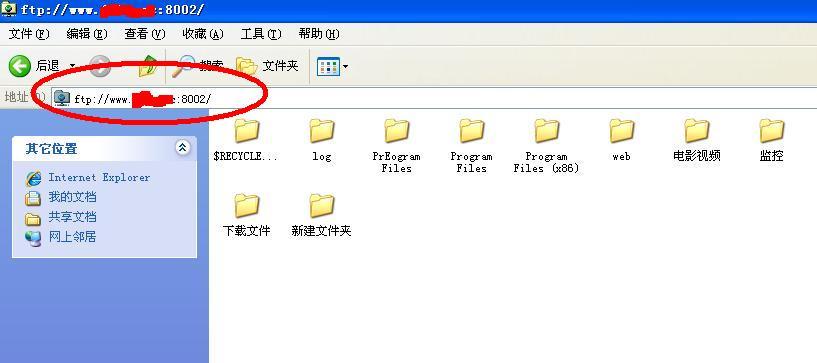 星际蜗牛C款服务器(第八篇)服务器搭建VPS+软件+映射外网篇(下篇) 互联网IT 第27张