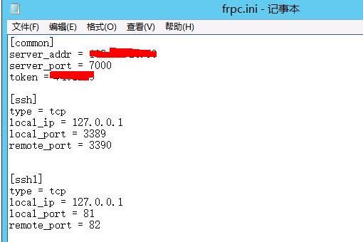 星际蜗牛C款服务器(第十三篇)FRP映射公网篇 互联网IT 第7张