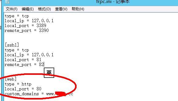 星际蜗牛C款服务器(第十三篇)FRP映射公网篇 互联网IT 第14张