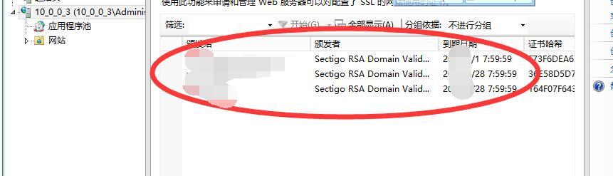 IIS更新新证书,还是老证书时间,IIS更新证书失败 互联网IT 第16张